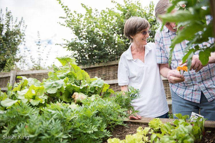 dementia sensory garden